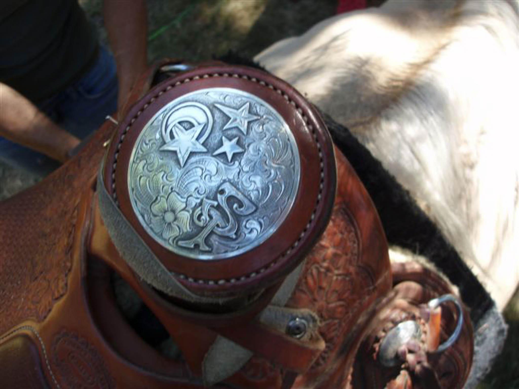 saddle horn.jpg