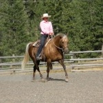 Private Hackamore Intro Camp