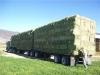 Chris truck 2.jpg